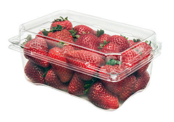 Punnets Packaging for Strawberry